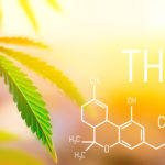 How to pass drug tests for weeds- Helpful products to pass a drug test at the workplace