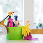What are the Janitorial Services in Richmond?